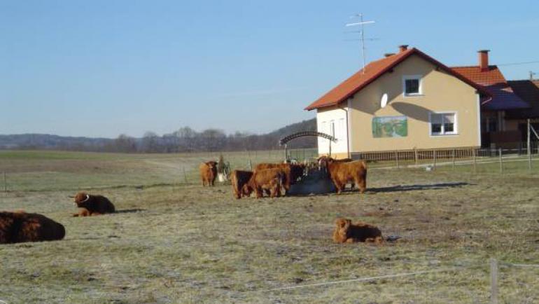Ekološka kmetija Rengeo